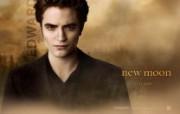 The Twilight Saga New Moon 暮光之城2 新月桌面壁纸 北美新上映电影壁纸合集2009年11月版 影视壁纸