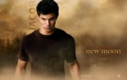 The Twilight Saga New Moon 吸血新世纪2新月传奇桌面壁纸 北美新上映电影壁纸合集2009年11月版 影视壁纸