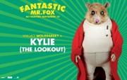 The Fantastic Mr Fox 了不起的狐狸爸爸桌面壁纸 北美新上映电影壁纸合集2009年11月版 影视壁纸