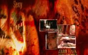 《Cabin Fever 尸骨无存》官方电影壁纸 影视壁纸