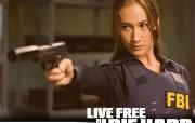 电影壁纸《虎胆龙威4 Live Free or Die Hard》 影视壁纸