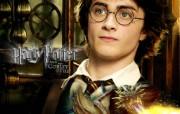 电影《哈利波特与火焰杯》精美壁纸 影视壁纸