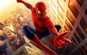 电影《蜘蛛侠1》精美壁纸 影视壁纸