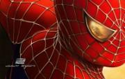 电影《蜘蛛侠2》精美壁纸 影视壁纸