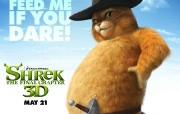 怪物史莱克4 Shrek Forever After 电影壁纸 史瑞克快乐4神仙 Shrek Forever After 桌面壁纸 怪物史莱克4 Shrek Forever After 影视壁纸
