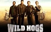 《荒野大飚客 Wild Hogs》壁纸下载 影视壁纸