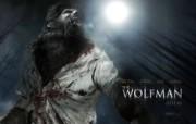 狼人 The Wolf Man 壁纸4 《狼人》 The W 影视壁纸