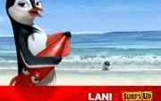 Surf's up 冲浪企鹅电影壁纸 影视壁纸