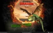 驯龙记 How to Train Your Dragon 壁纸19 《 驯龙记 》 Ho 影视壁纸