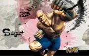 36张 超级街头霸王4 Super Street Fighter 4 原画壁纸 沙加特 Sagat 超级街头霸王4 水墨插画壁纸 1920 1200 超级街头霸王4 Super Street Fighter 4 游戏壁纸