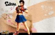 36张 超级街头霸王4 Super Street Fighter 4 原画壁纸 樱 Sakura 超级街头霸王4 角色壁纸 1920 1200 超级街头霸王4 Super Street Fighter 4 游戏壁纸
