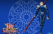 Fateunlimited codes 游戏壁纸