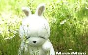 流氓兔 MashiMaro 可爱壁纸 壁纸70 流氓兔 MashiM 游戏壁纸
