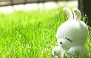 流氓兔 MashiMaro 可爱壁纸 壁纸71 流氓兔 MashiM 游戏壁纸
