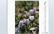 五月月历 YAHOO韩国壁纸 壁纸24 五月月历(YAHOO 月历壁纸