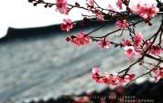 YAHOO韩国5月份月历壁纸 月历壁纸