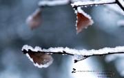 2月月历 雪景桌面壁纸 YAHOO韩国二月月历壁纸 月历壁纸