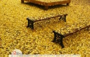 12月月历 黄色银杏叶桌面壁纸 YAHOO韩国十二月月历壁纸 月历壁纸