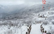 12月月历 雪景桌面壁纸 YAHOO韩国十二月月历壁纸 月历壁纸