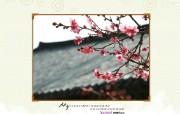 YAHOO韩国四月月历壁纸 壁纸17 YAHOO韩国四月月 月历壁纸