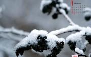 YAHOO韩国新年1月月历壁纸 1月壁纸 自然风景桌面壁纸 Yahoo韩国新年1月份月历壁纸 月历壁纸