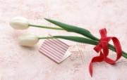 春暖花开!鲜花宽屏壁纸 植物壁纸