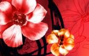 合成花卉 高清壁纸 合成花卉 高清壁纸 植物壁纸