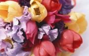 婚礼的花艺 植物壁纸