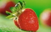 绿色主题 水果拍摄写真壁纸 壁纸13 绿色主题 水果拍摄写 植物壁纸