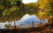 秋天摄影 黄色的感觉 宽屏壁纸 壁纸4 秋天摄影(黄色的感觉 植物壁纸