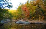 秋天摄影 黄色的感觉 宽屏壁纸 壁纸5 秋天摄影(黄色的感觉 植物壁纸