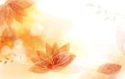 色彩花朵花纹宽屏壁纸 色彩花朵花纹宽屏壁纸 植物壁纸