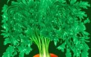五谷杂粮 植物壁纸
